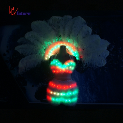 Chinese Sexy Girl's LED Bra&Pants&Feather Backpack for Dance Nightclub Show